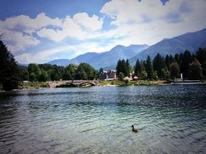 Our last day's swimming venue Lake Bohinj