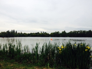 Shepperton Lake my Monday and Wednesday training venue